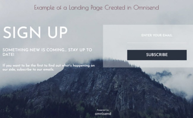 An example of a landing page that was created inside the Omnisend platform